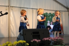20060924_strassenfest_009